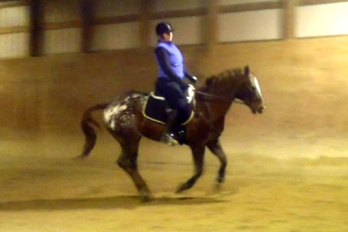 12 19 canter