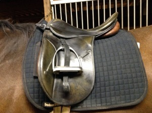 My wonderful old Stubben Romanus.  Love this saddle.
