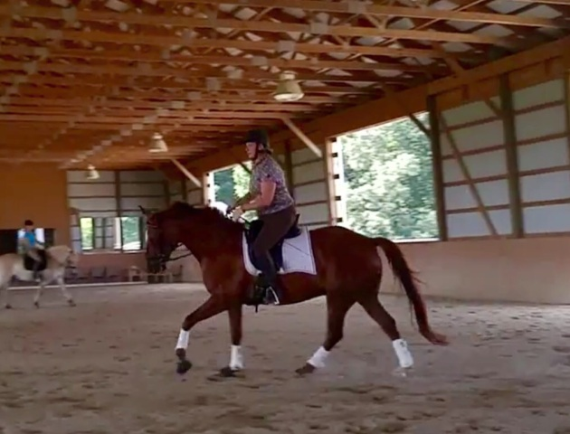 During the test ride.  I felt comfortable right away.  And this canter is really nice.